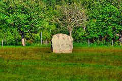 ... och stenarna ... ix.
