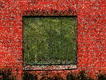 Fönster ix (Vedum).