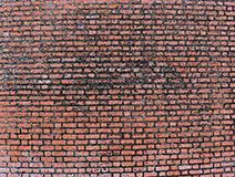 Sprucken fasad ii.